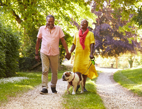 6 Benefits of Walking for Seniors and How to Get Started